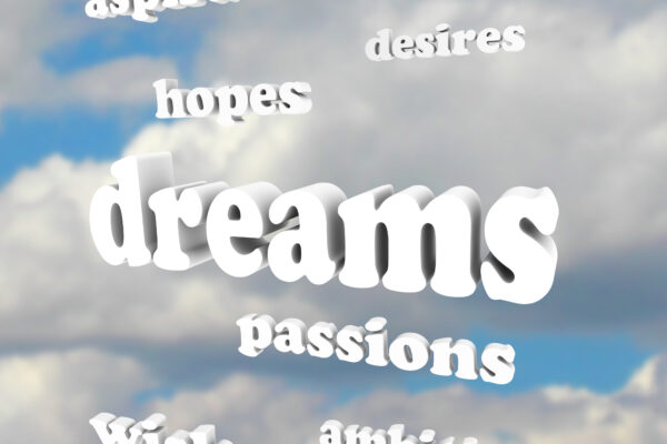 Dreams, aspirations, hopes, desires, passions -- all help us define success your way.