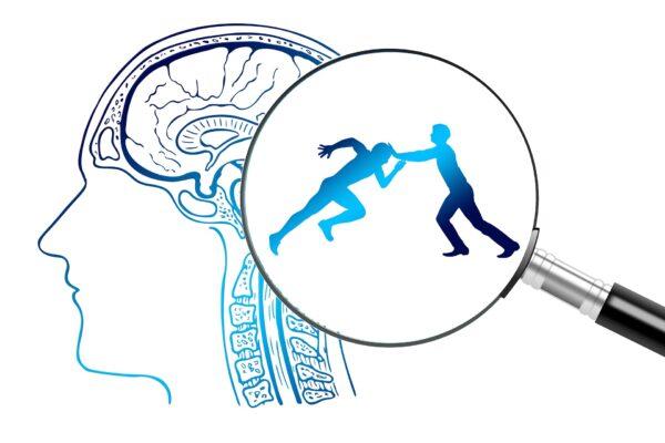 Mental hemispheres